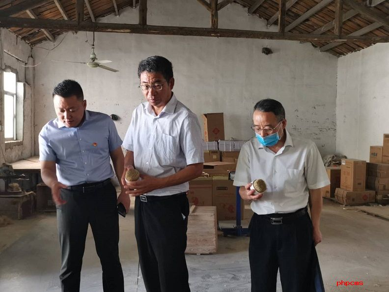 皖北煤电总经理袁兆杰赴扶贫定点帮扶村调研