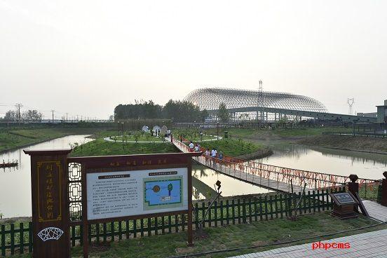 """刘庄煤矿废弃洼地变身""""网红""""湿地公园"""